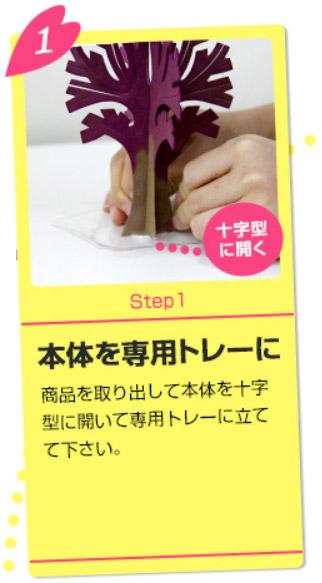 Magic桜の育て方1